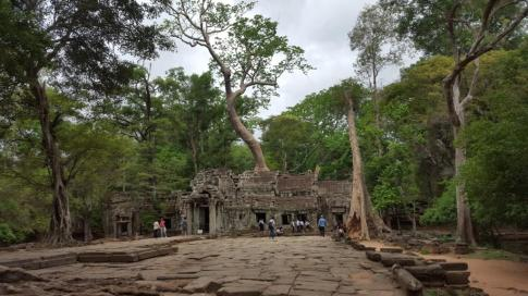 Ta Phrom-the jungle temple